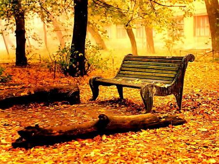 http://hastiyemaman.persiangig.com/0.176151001313307463_parsnaz_ir.jpg