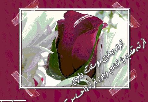 http://hastiyemaman.persiangig.com/tavalod%20kart/kart%2011111111111111.jpg